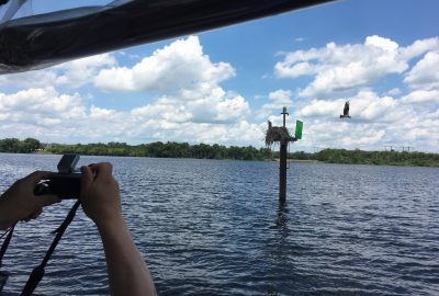 waterway marker system, How You Can Memorize the Waterway Marker System