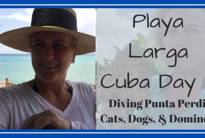 Playa Larga Cuba, HAVANA, CUBA TO PLAYA LARGA // DIVING PUNTA PERDIZ // DAY 3 // Deep Water Happy